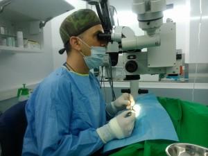 oftalmologia-veterinaria-coruña-cvlejarza